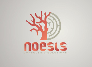 Noesis Consulting Solutions